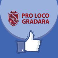 Contenuti online per la pagina Facebook diProloco-Gradara