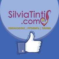 Contenuti online per la pagina Facebook diSilviaTinti.com