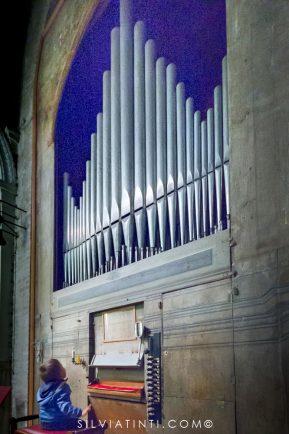 Montecassiano - Collegiata di Santa Maria della Misericordia - organo